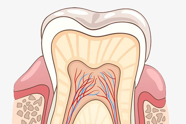 Signs a Root Canal may be Necessary